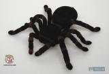 Паук мохнатый с пультом ДУ - Uncle Milton Radio Control Tarantula - Код-568